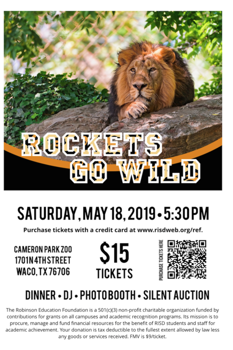 Rockets Go Wild Flyer